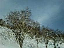 松尾祐孝の音楽塾&作曲塾~音楽家・作曲家を夢見る貴方へ~-山頂付近の雪と樹木の風景