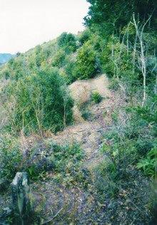 自然、戦跡、ときどき龍馬-灰方坂の六十六部供養塔