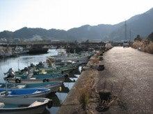 自然、戦跡、ときどき龍馬-新荘川河口付近