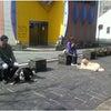 前橋市・渋川市 犬のしつけ 合同訓練の画像
