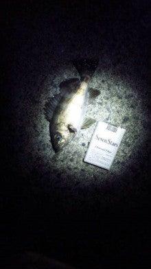 せーぼーの魚釣り通信簿-120315_202612.jpg