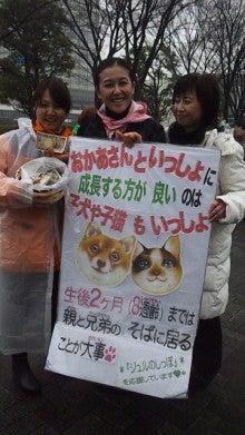岡本夏生オフィシャルブログ「人生ガチンコすぎるわよ!」Powered by Ameba-DVC00607.jpg