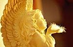 天使の癒し lesoleil / ソレイユ