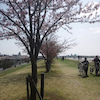 エスワイファーム通信(春に向かって)の画像