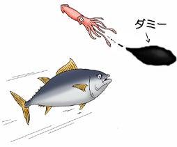 川崎悟司 オフィシャルブログ 古世界の住人 Powered by Ameba-イカのスミ吐き