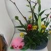 今週のデイサービスの花の画像