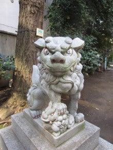 番猫と番犬の舌先三寸-120326銀杏岡八幡2