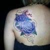 刺青★青薔薇(肩甲骨)カラー!の画像