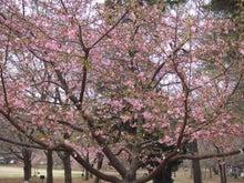 栄町観光協会ドラムの里スタッフブログ