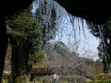 夫婦世界旅行-妻編-滝の裏から