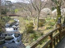 夫婦世界旅行-妻編-川に橋