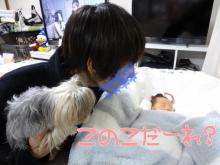 ☆。*・Sweet choco life・*。☆ヨークシャテリア-2012年