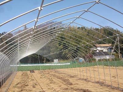 農業のトータルコーディネータ  イノウエ農商事のブログ-03314