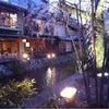 祇園白川宵桜ライトアップの画像