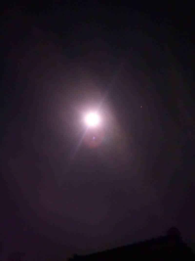 $『ケセラセラ~』と、いきましょいっ!☆彡-4/4春らしい月