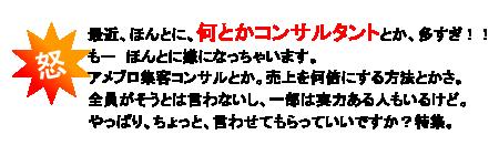 $アメブロカスタマイズで名古屋Webコンサル会社が売れる仕組み実現お手伝いブログ~-ikari