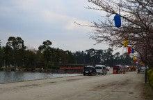 まさやんのブログ-天王川公園1