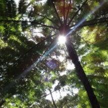 沖縄は良い季節が始ま…