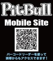PitBull 4 Life