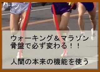 岐阜市の整体・カイロのお店-【整体・岐阜】プラス‐マラソン