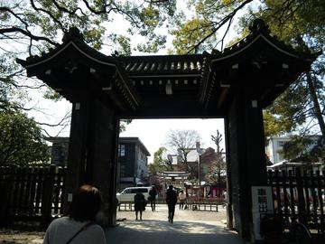 大阪府枚方市 はやし鍼灸整骨院ブログ