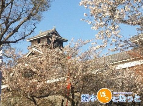 熊本ほっとねっとブログ-H24.04.11