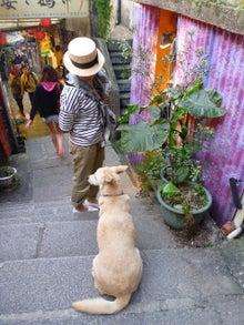 polygon-犬とともさん
