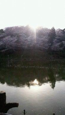 凛と空に咲く-2012041016460001.jpg
