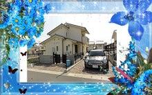神戸 元町 占い館【天使のうさぎの日記】万野愛果(まんの あいか)