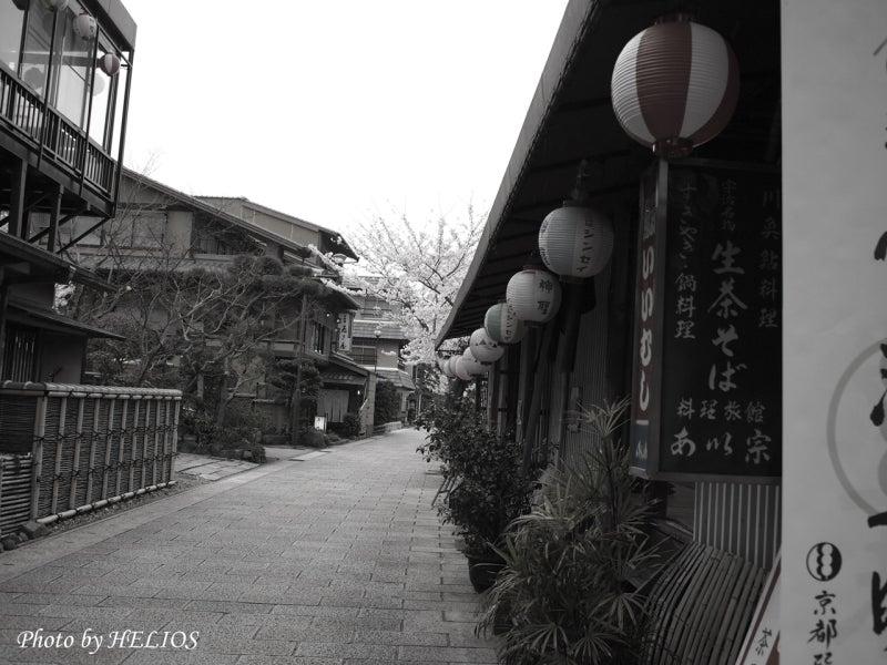 『ケセラセラ~』と、いきましょいっ!☆彡-4/9宇治川沿い白黒っぽく
