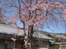 「ひつじのお里」in 京都 ~ヒーリングと 喜びのからだと 心~-水屋神社1