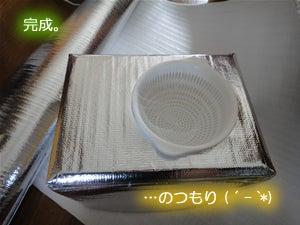 水耕栽培でいってみよう-発泡スチロール容器2-11
