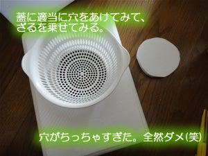 水耕栽培でいってみよう-発泡スチロール容器2-02