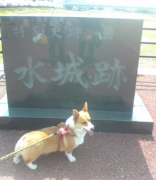 おてんばゆきちゃんさんのブログ-Image6.jpg