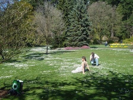 i Canada☆ベテランカウンセラーのいるバンクーバー無料現地留学エージェントのブログ-Apr 14'12 ⑨ i Canada