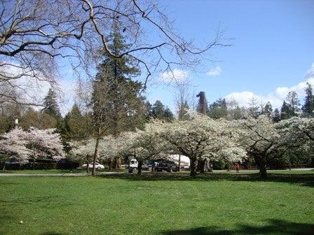 i Canada☆ベテランカウンセラーのいるバンクーバー無料現地留学エージェントのブログ-Apr 14'12 ② i Canada