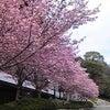 大本山中山寺にてパフォーマンスの画像