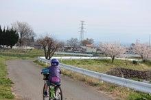 Chipapa の備忘録-サイクリング3