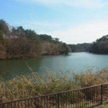 水の森公園の放射線量