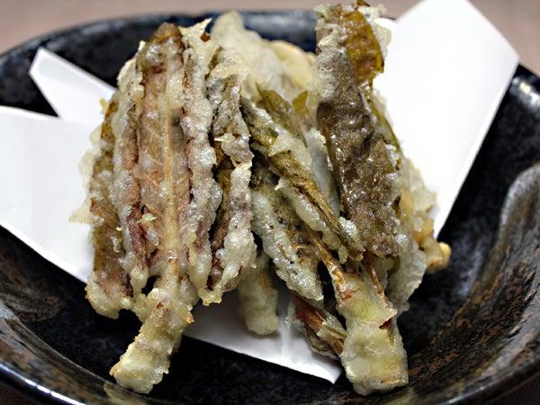 天ぷら イタドリ 【イタドリとは?】成分や効果・効能、食べ方は?