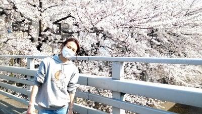 羽田惠理香オフィシャルブログ「Erikaちゃんぷるー」-2012年 お花見