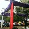 『わんぱく相撲横須賀場所』。の画像