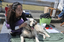 $犬のホリスティックケア*makana*横浜湘南(ドッグマッサージ・レイキ・フラワーレメディー)-ipodfile.jpg
