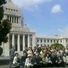 『国会議事堂がより白く見えます』。の画像
