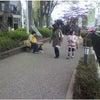 前橋市・富士見村 犬のしつけ 外回り訓練の画像