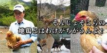 無双社は『愛媛の安心・安全な商材を全国にお届けします!!』