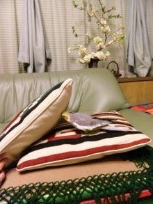 オカメインコのももちゃんと花教室と旅日記-120429_211113.jpg
