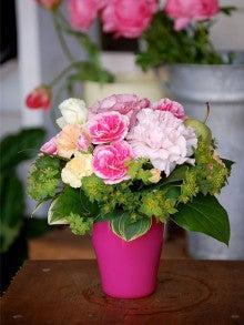 | 札幌の花屋 花や智千ブログ |