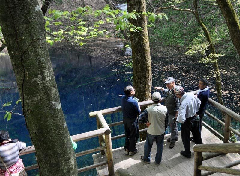 $白神山地ツアーの白神なびスタッフブログ-2012年5月1日の十二湖5