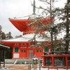 高野山・熊野三山 スピツアー(6月)の案内の画像